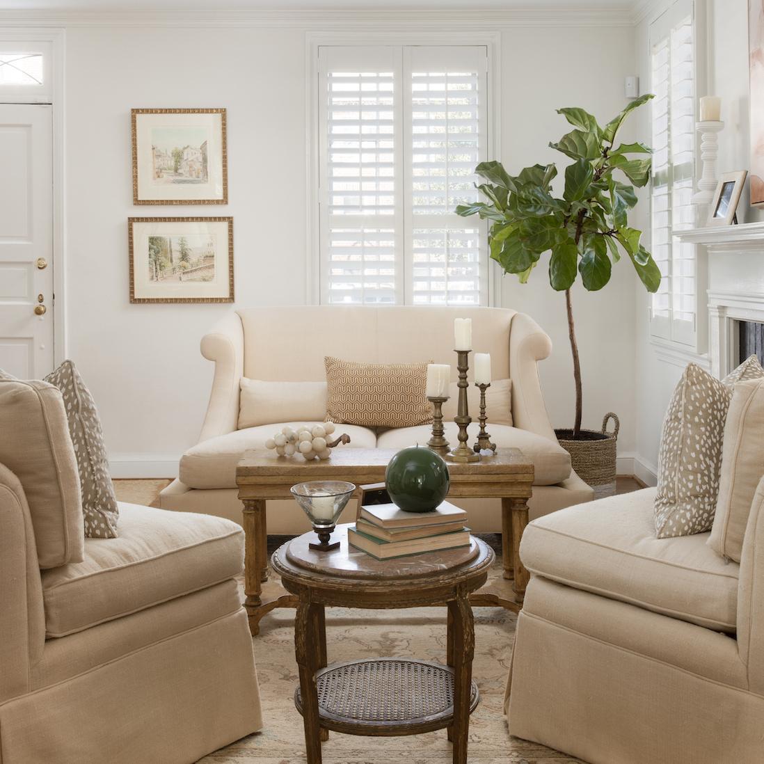 old-town-alexandria-living-room-interior-design
